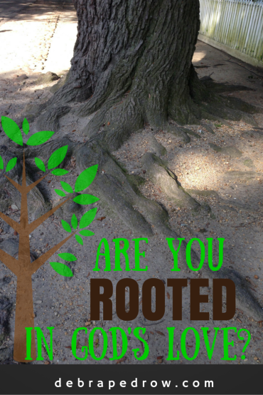 Are you rooted in God's love?