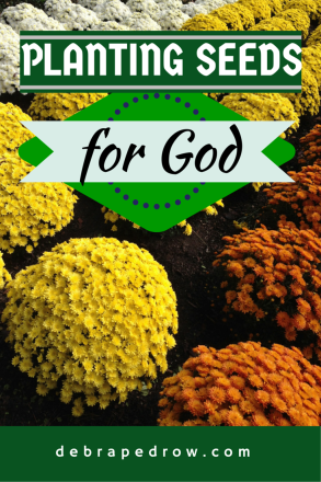 Planting seeds for God