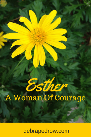 THE STORY - Ester a woman of courage
