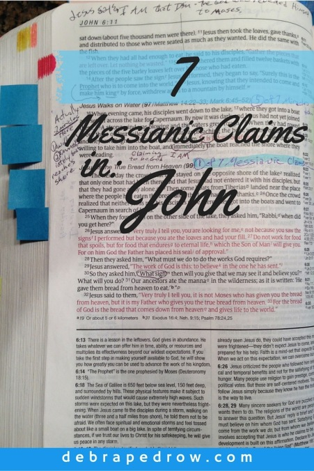 7 Messianic Claims in John
