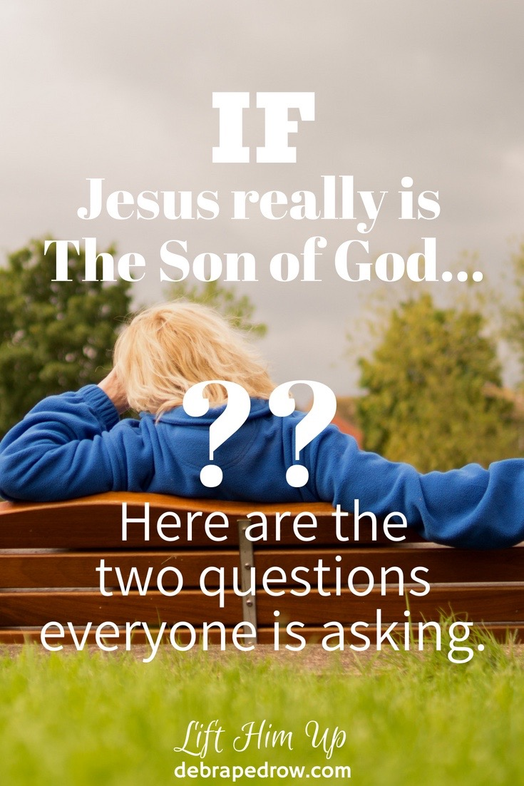 If Jesus really is the Son of God...